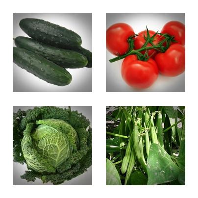 Collage Gemüse